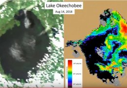 Lake Okeechobee algae levels