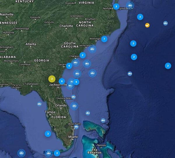 Shark Migration Continues Including Great Whites Palm