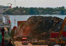 Port of Palm Beach scrap metal pile 6-6-19