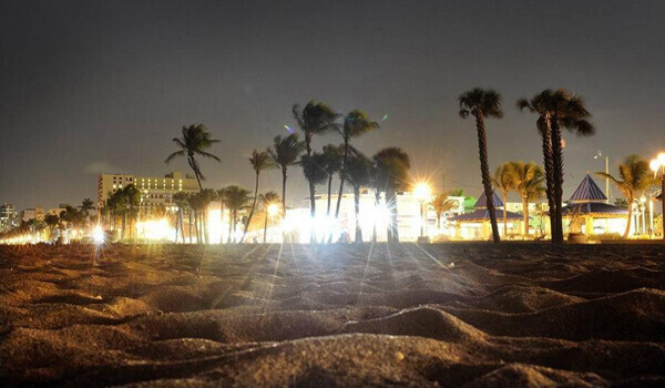 Sea Turtle Lights in Town of Palm Beach