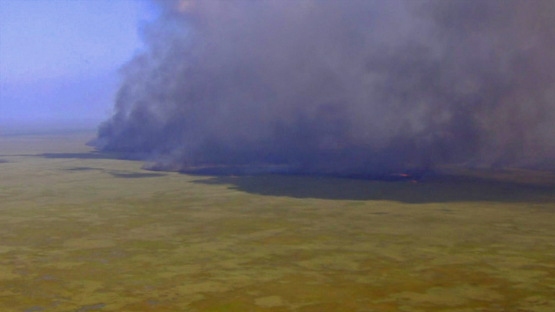 Large Brush Fire i n Everglades