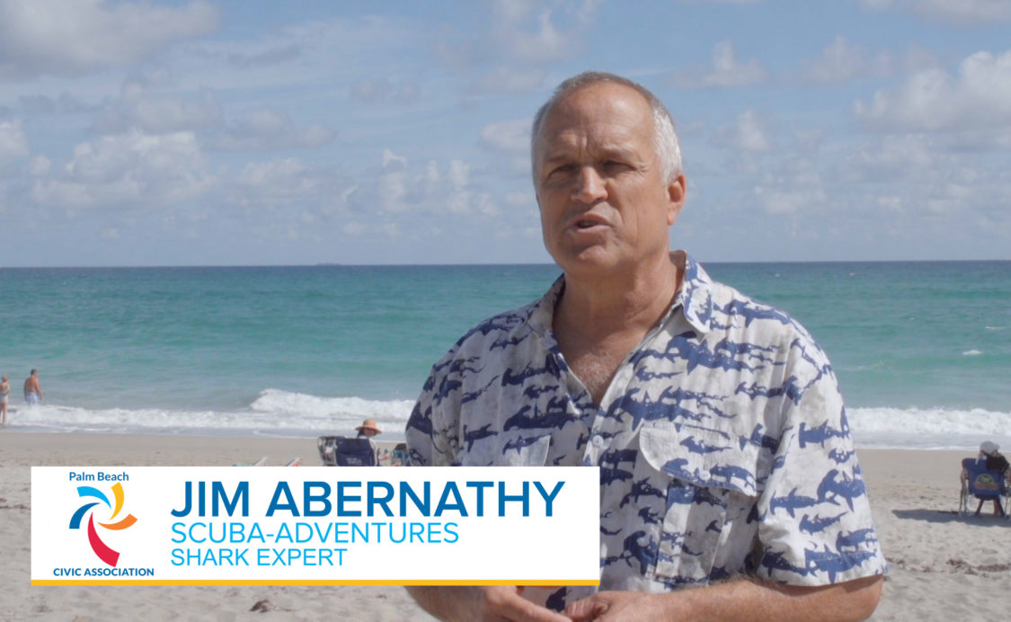 Palm Beach Civic Association Spotlight: Jim Abernethy on Sharks