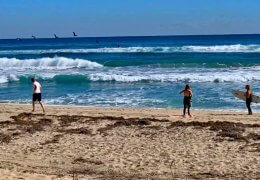 Surfing, beach running, bird watching, and sailing in the Town of Palm Beach